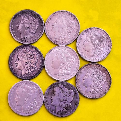 Silver Morgan Dollars